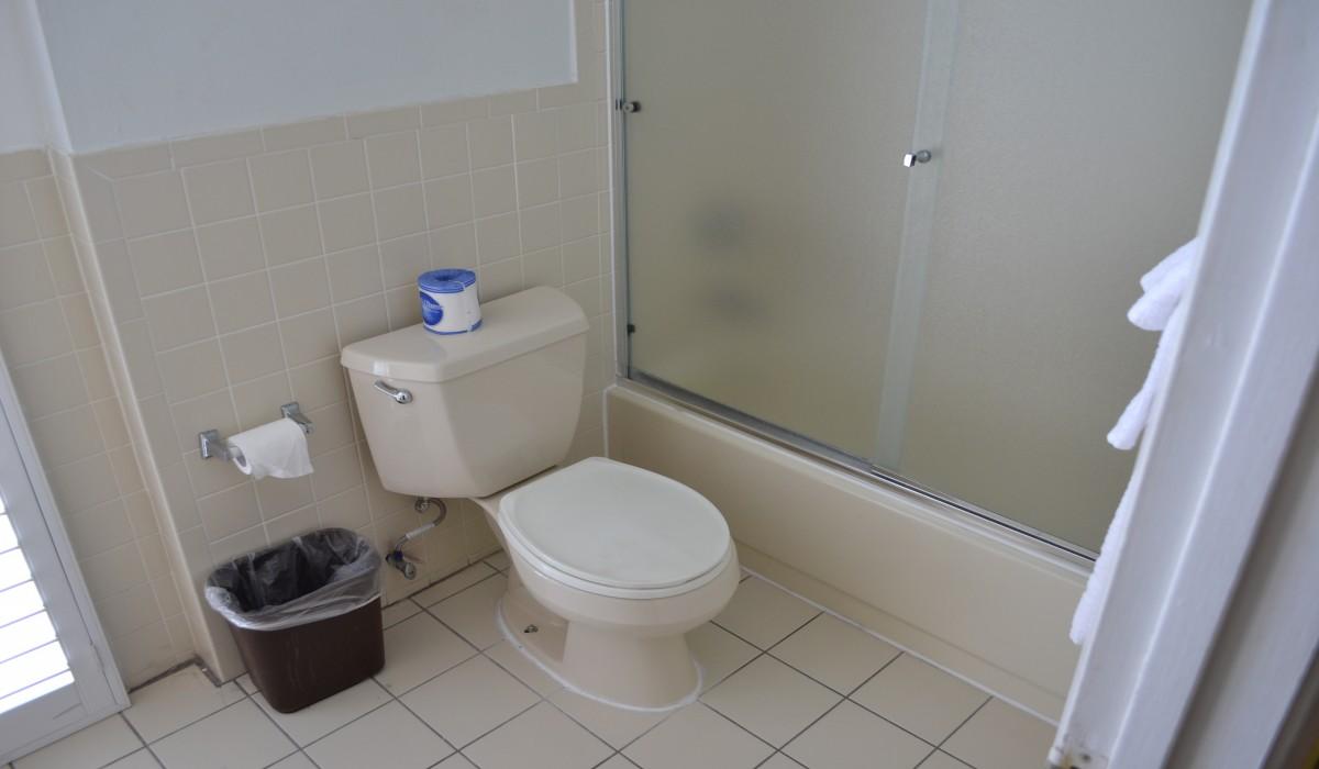 Full bathtub and shower