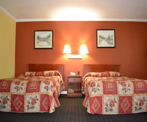 Alpha Inn & Suites San Francisco - Perfect room for families visiting San Francisco